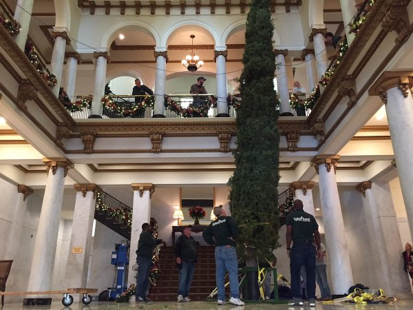 PHOTOS, VIDEO: Crew Installs 30-foot Christmas Tree Inside