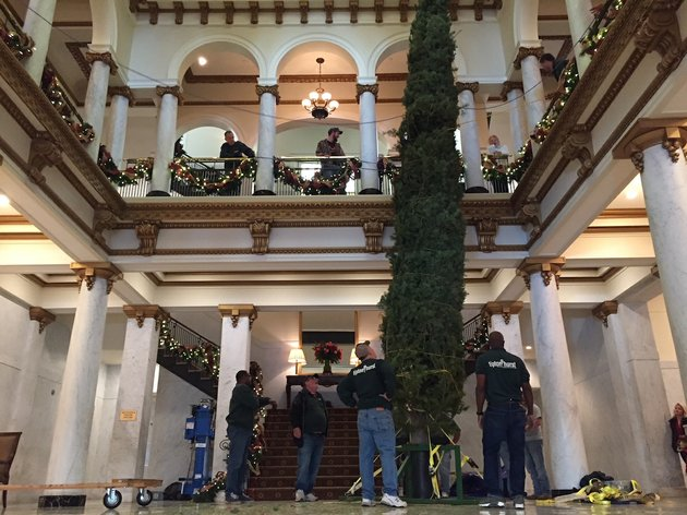 workers-on-friday-nov-24-2017-prepare-to-move-a-30-foot-white-fir-into-place-inside-little-rocks-capital-hotel-after-hoisting-the-tree-upright-from-a-second-floor-balcony