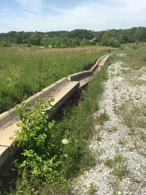 File Photo/NWA Democrat-Gazette/SCARLET SIMS Grass and weeds grow in the Meadows at River Mist in May. The Bank of Fayetteville plans to sell about 12 acres of the abandoned high-density subdivision to Heritage Fellowship Church. The move effectively kills the plan for a decentralized sewer system 1,500 feet from the lake.