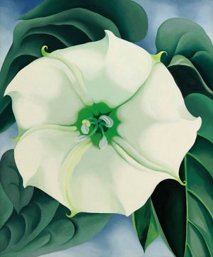 "Photography by Edward C. Robison III; courtesy of Crystal Bridges Museum of American Art, Bentonville, Arkansas. Georgia O'Keeffe's ""Jimson Weed/ White Flower No. 1,"" a 1932 oil on canvas 48 x 40 inches, is among works that will be on show in a special exhibit May 26-Sept. 3 at Crystal Bridges Museum of American Art."