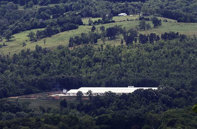the-ch-hog-farms-operation-shown-may-4-sits-near-a-buffalo-river-tributary-in-newton-county