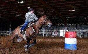 TM_0114Wildart_Horse