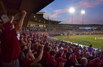 Arkansas fans cheer as Arkansas takes on Missouri State on Monday, June 5, 2017, during the final game of the NCAA Fayetteville Regional at Baum Stadium in Fayetteville.