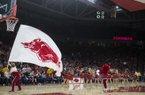 Arkansas Razorbacks cheerleaders cheer during a basketball game, Saturday, January 20, 2018 at Bud Walton Arena in Fayetteville.