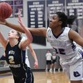 Fayetteville's Jasmine Franklin (right) tries to knock the ball away from Bentonville West's Allie C...