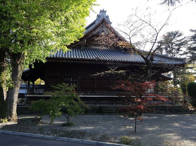 japanese-history-tours-with-guide-mark-hobold-make-a-visit-to-kaneiji-temple-ueno-tokyo-the-specialized-tours-are-packed-with-information-and-have-more-flexibility-than-more-traditional-tours