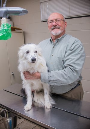 "Dr. David Oates of Russellville was named 2017 Veterinarian of the Year by the Arkansas Veterinary Medical Association. Oates established the Russellville Animal Clinic in 1986. He was joined later by partner Dr. Heath Stump. Oates, whose father was a longtime Pottsville pharmacist, said he loved animals and medicine. ""When I went to college at Arkansas Tech, I decided to go to vet school because it was a mix,"" he said."