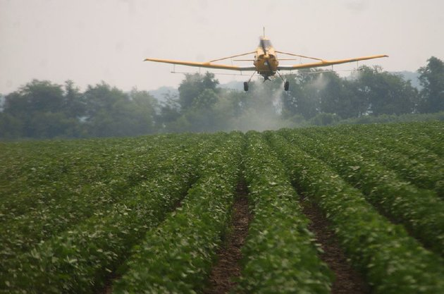 a-crop-duster-sprays-a-cotton-field-near-blytheville-with-malathion-to-kill-boll-weevils-in-this-2005-photo-the-boll-weevil-hasnt-been-found-in-arkansas-cotton-since-2006