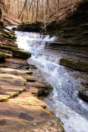 Slippery footing through a slot canyon made enjoying the beauty of Horsehead Creek a bit of a challenge March 1 for bushwhackers determined to see six waterfalls in one day.