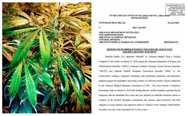 a-file-photo-of-marijuana-is-shown-with-a-screenshot-of-the-first-page-of-judge-wendell-griffens-order-that-placed-an-injunction-on-the-permitting-of-arkansas-first-five-cannabis-growers