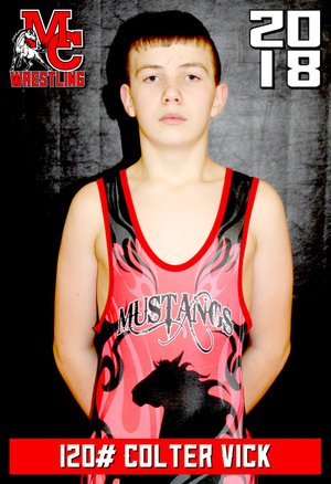 Photo Submitted Vick Colter placed sixth in the 12 and under 120 lbs. division in the 2018 Missouri USA State Championships held in St. Louis.