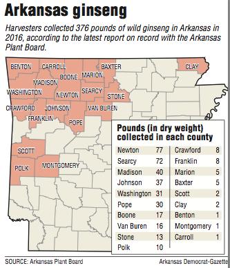 Arkansas ginseng crop also a tariff target