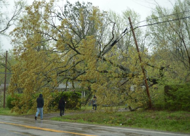 nwa-democrat-gazetteandy-shupe-residents-walk-to-a-house-in-mountainburg-friday-april-13-2018-beneath-a-large-tree-that-fell-across-a-driveway-after-a-tornado-swept-through-the-town