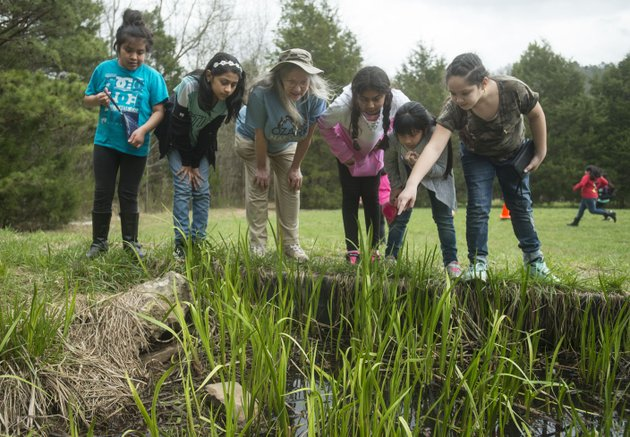 joanie-patterson-third-from-left-talks-about-wildlife-friday-to-fourth-graders-from-brighton-park-school-in-chicago-at-ozark-natural-science-center-near-huntsville-the-students-from-brighton-park-a-public-charter-school-are-visiting-northwest-arkansas-for-a-five-day-immersive-environmental-education-program