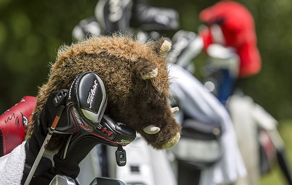 Razorback head covers are shown at Pinnacle Country Club on Thursday, June 23, 2015, in Rogers.