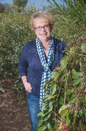 Sunnie Ruple of Vilonia is the 2017 Faulkner County Master Gardener of the Year. She has a variety of plants at her home in Vilonia, including this native crossvine. Ruple joined the local Master Gardeners in 2007 and since then has volunteered hundreds of hours, both work hours and educational hours, and has served in six of the eight executive-board positions, including president.