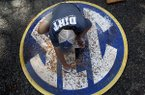 In this May 23, 2014 photo, John Wagnon cleans the SEC logo before a game at the Southeastern Conference NCAA college baseball tournament in Hoover, Ala. (AP Photo/Butch Dill)