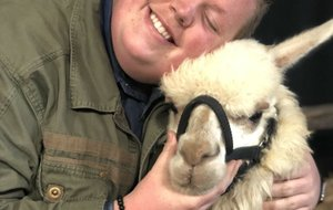 "Noah Davis, 18, poses with the alpaca that ""American Idol"" adopted for him."
