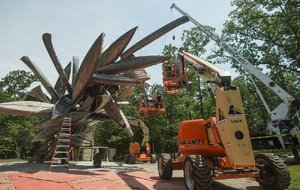 A crew installs the sculpture Monochrome II by Nancy Rubins on June 7 on the North Forest Trail at Crystal Bridges Museum of American Art in Bentonville. The sculpture is fabricated from aluminum canoes and jon boats.