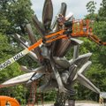 A crew installs the sculpture Monochrome II by Nancy Rubins June 7 on the North Forest Trail at Crys...
