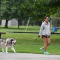 Ashley Robinson of Springdale walks her dog Abbey in Murphy Park Tuesday August 21, 2018. Robinson c...