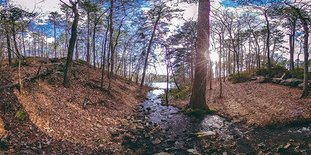 """Submitted photo VIRTUAL VIEW: A panoramic view from a trail at Garvan Woodland Gardens will give potential visitors a unique look at Hot Springs in a new virtual reality film from Visit Hot Springs. The convention and visitors bureau said the two virtual reality films it produced, """"Hot Springs, The Experience of a Lifetime,"""" are the first of their kind in tourism marketing in Arkansas."""