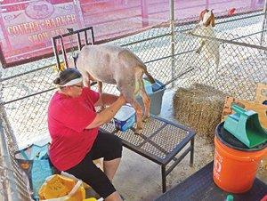 Saline County Fair, Benton