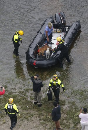 Rescue personnel use a small transport a flood victim and her animals to dry land from heavy rains from Florence, now a tropical storm, in New Bern, NC., Saturday, Sept. 15, 2018. (AP Photo/Steve Helber)
