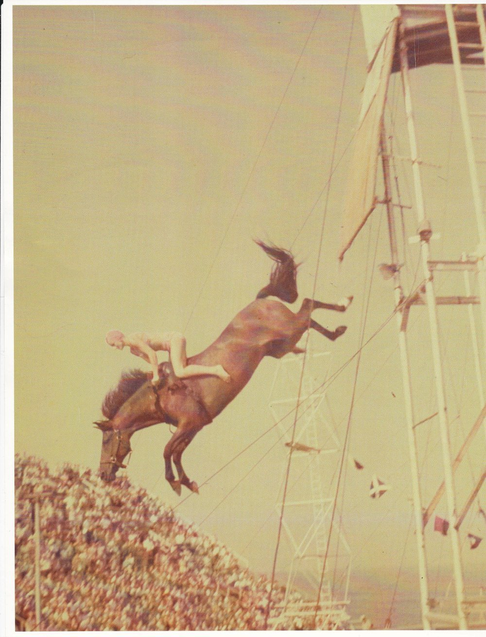 Ann Miles and Gamal dive from the High Diving Horse show's 40-foot tower on Steel Pier at Atlantic City in the 1960s. (Courtesy Ann Miles)