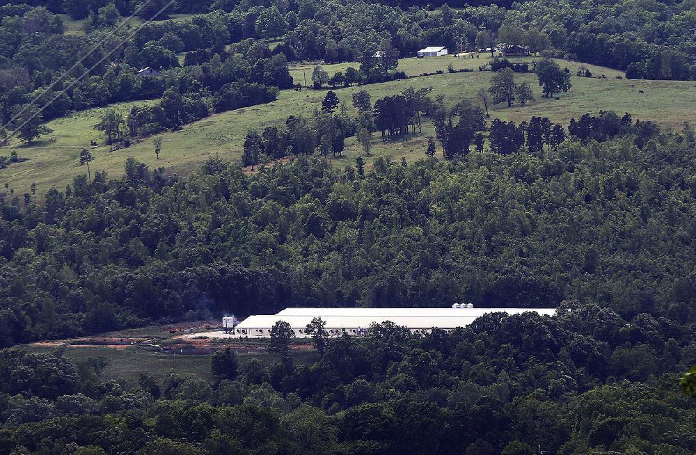 Court order puts hog farm's permit application process on hold | Arkansas Democrat-Gazette