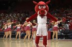 Arkansas mascot Big Red and members of the Razorbacks pom squad perform during a timeout of a game against Florida International on Saturday, Dec. 1, 2018, in Fayetteville.