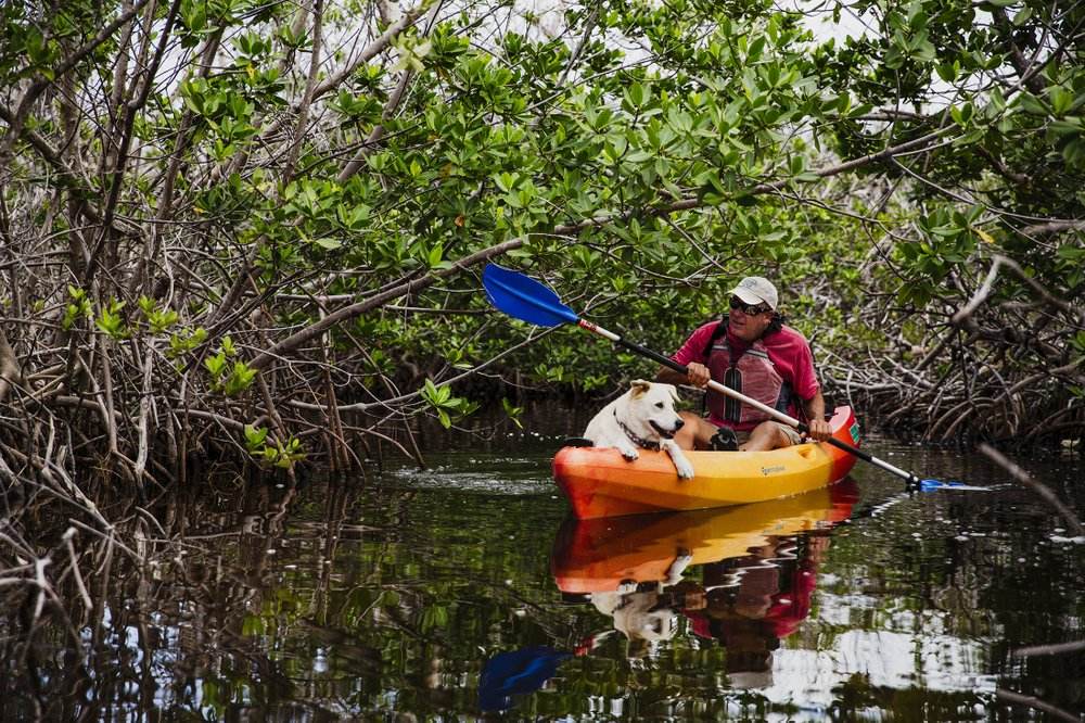 Bill Keough navigates through the mangrove creeks with his dog, Scupper, near Big Pine Key, Fla. The Florida Keys, with their rich and varied history and wildlife, make for an entertaining road trip.
