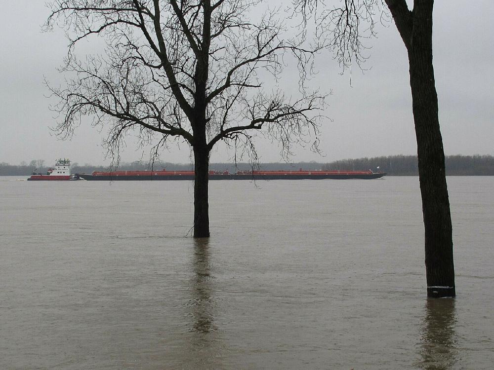 Severe storms, floods forecast in state today | Arkansas Democrat-Gazette