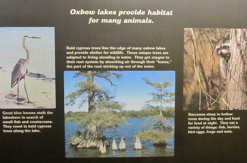 ARKANSAS SIGHTSEEING: State's largest natural lake replete