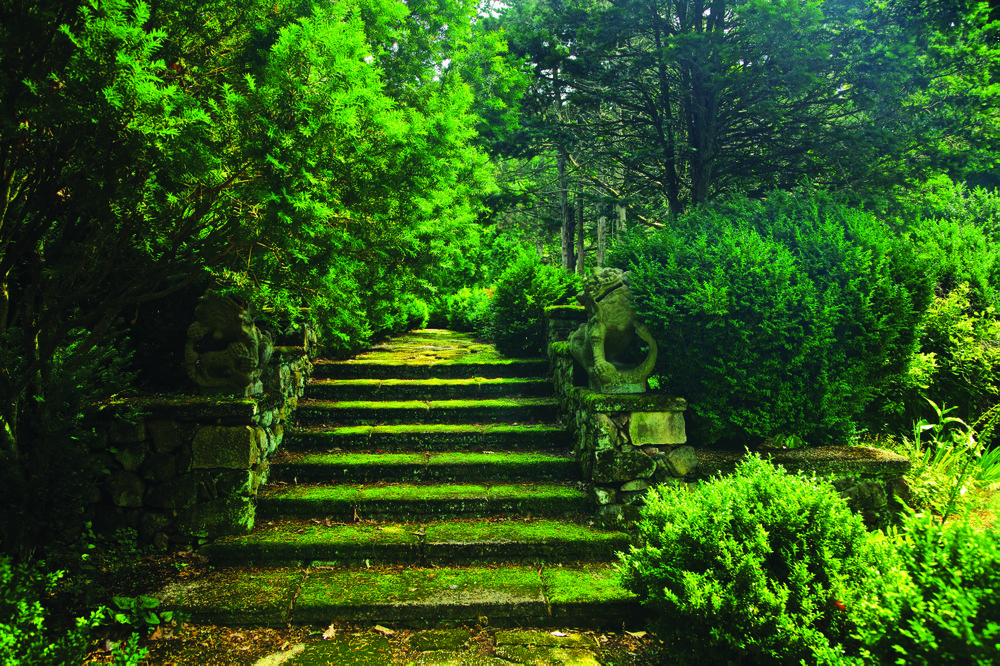Moss: This photo provided by Rizzoli Press shows moss-covered steps guarded by a pair of centuries-old Chinese dragons in Greenwood Gardens, Short Hills, N.J.