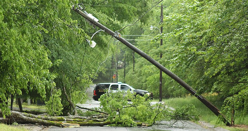 Trees downed, power outages reported