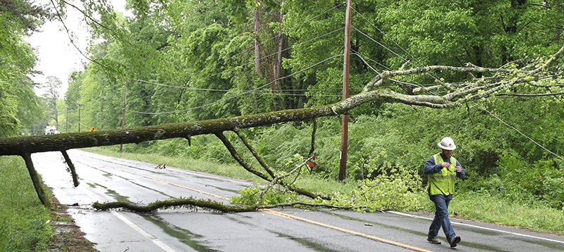 The Sentinel-Record/Richard Rasmussen TREE DOWN: Traffic on Park Avenue was rerouted through Gorge Road and Sleepy Valley after a tree fell across the roadway just north of the Gorge Road intersection. A power outage in the area around the fallen tree affected around 170 Entergy Arkansas Inc. customers.