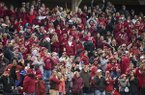 Arkansas baseball fans are shown during a game against LSU on Thursday, May 9, 2019, in Fayetteville. Crowds are expected to reach record levels this weekend and, coupled with other events like graduation and the SEC Track and Field Outdoor Championships, will provide an economic boost to the Fayetteville economy.