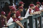 Arkansas coach Dave Van Horn (middle) looks on from the dugout during the Razorbacks' 1-0 loss to Florida State on Saturday, June 15, 2019, during the College World Series at TD Ameritrade Park in Omaha, Neb.