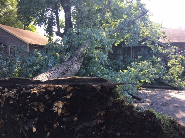 38,000 without power day after strong storms