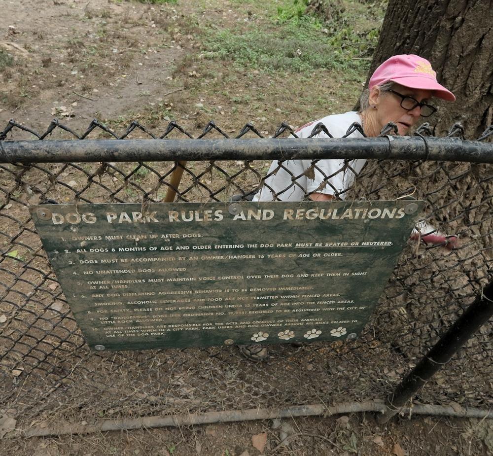 Volunteers clean up parks in Little Rock