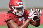 Arkansas receiver Trey Knox (7) makes a catch Tuesday, Aug. 6, 2019, during practice at the university practice field.