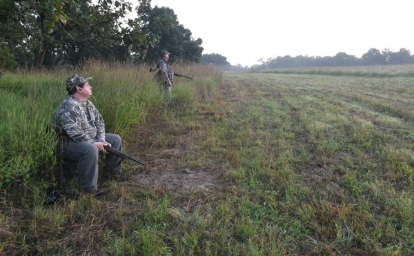 NWA dove fields added to permit system