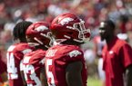 Arkansas defensive end Dorian Gerald is show prior to a game against Portland State on Saturday, Aug. 31, 2019, in Fayetteville.