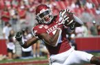 Arkansas receiver Trey Knox makes a touchdown catch in front of a Colorado State defender during the first half of a college football game, Saturday, Sept. 14, 2019, in Fayetteville. (AP Photo/Michael Woods)