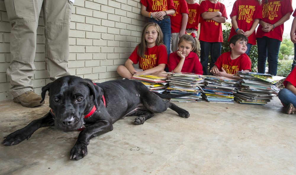 Bear the dog as she relaxes next to Betty Wilson's third grade class at Columbia Christian School.