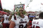 South Carolina tight end Kyle Markway (84) holds a piece of the Sanford Stadium hedge in his teeth as he celebrates defeating Georgia 20-17 in double overtime an NCAA college football game Saturday, Oct. 12, 2019, in Athens, Ga. (AP Photo/John Bazemore)