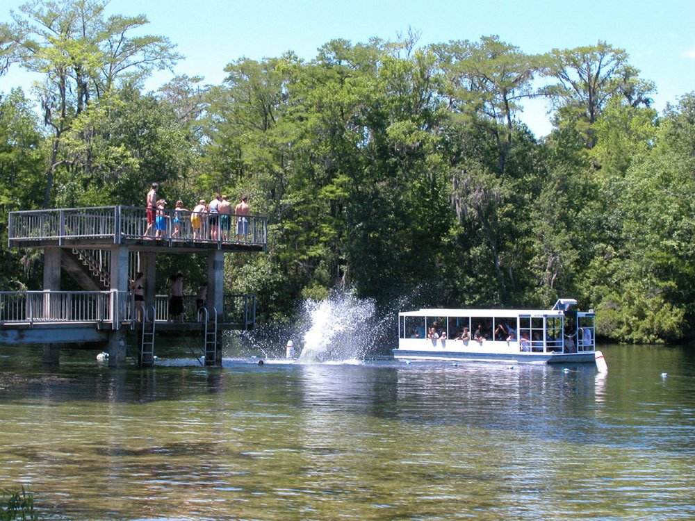 One of the world's largest springs, Wakulla Springs State Park, near Tallahassee, Fla., has been a filming site for movies and is a perfect place to take a boat tour. (Photo by TNS/Orlando Sentinel)