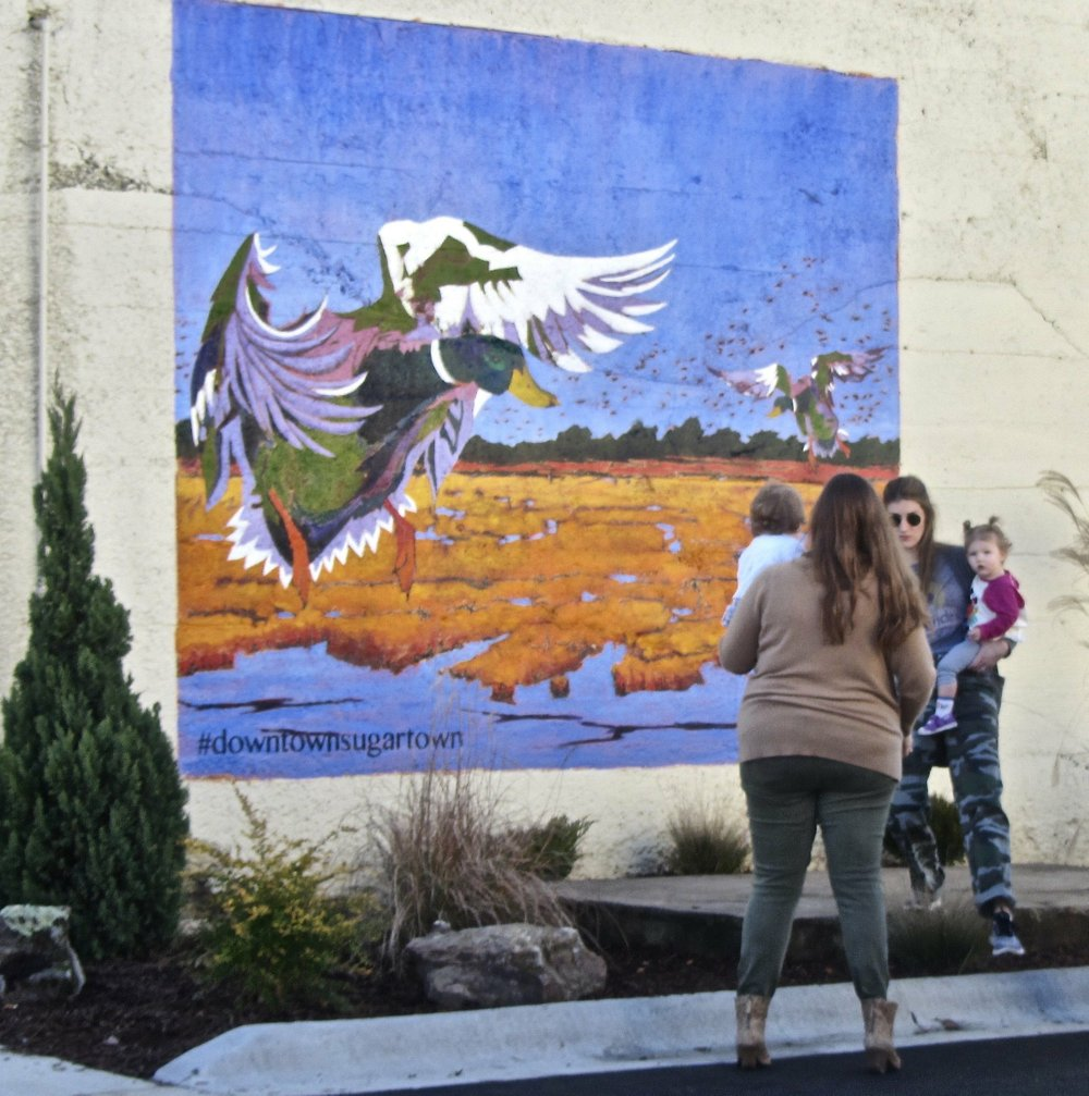 A mural in downtown Stuttgart sports a duck motif for Wings Over the Prairie Festival. Special to the Democrat-Gazette/Marcia Schnedler