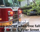 Fallen tree injures 2 in storm